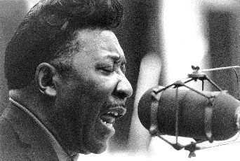Muddy Waters.jpg (33338 byte)